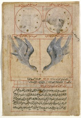 The Constellation of Corvus the Raven, Page from Suwar al-Kawahib al-Thabita (The Book of Fixed Stars) by Abd al-Rahman (b. Umar al-Sufi, 903-986 CE), 16th century. Watercolor on paper, 5 3/4 x 7 7/8 in. (14.6 x 20 cm). Brooklyn Museum, Designated Purchase Fund, 74.23