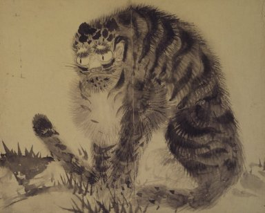 Tiger, late 19th-early 20th century. Ink on paper, 10 9/16 x 12 15/16 in. (26.8 x 32.8 cm). Brooklyn Museum, Designated Purchase Fund, 75.125.15