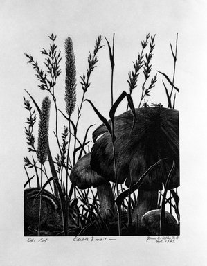 Grace Arnold Albee (American, 1890-1995). Edible? No. 1, 1972. Wood engraving on paper, Image: 6 3/16 x 4 3/4 in. (15.7 x 12.1 cm). Brooklyn Museum, Gift of the artist, 76.198.78. © Estate of Grace Arnold Albee