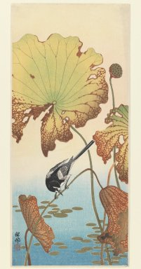 Ohara Koson (Shoson) (Japanese, 1877-1945). Wagtail and Lotus, ca. 1915. Woodblock print, 14 13/16 x 6 7/16 in. (37.7 x 16.4 cm). Brooklyn Museum, Gift of Mr. and Mrs. Peter P. Pessutti, 77.264.4
