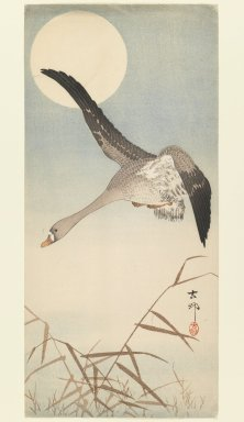 Ohara Koson (Shoson) (Japanese, 1877-1945). Goose Flying in Moonlight, ca. 1910. Woodblock print, 14 7/8 x 6 7/8 in. (37.8 x 17.5 cm). Brooklyn Museum, Gift of Mr. and Mrs. Peter P. Pessutti, 77.264.5