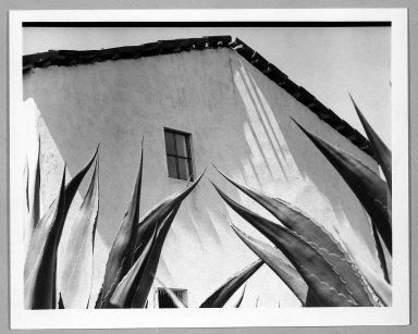 Manuel Alvarez Bravo (Mexican, 1902-2002). Ventana a los Magueyes, 1974-1976. Gelatin silver photograph, image: 7 1/8 x 9 7/8 in. (18.1 x 25.1 cm). Brooklyn Museum, Gift of William Berley, 79.294.3. © Colette Urbajtel/Asociación Manuel Álvarez Bravo