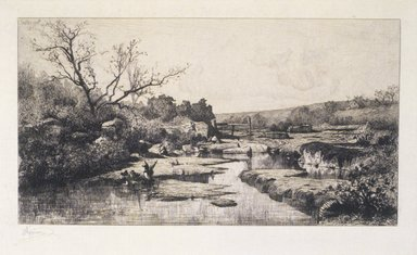Adolphe Appian (French, 1818-1898). The Source of the Albarine (Source de l'Albarine), 1870. Etching on paper, Image: 9 9/16 x 15 5/8 in. (24.3 x 39.7 cm). Brooklyn Museum, Designated Purchase Fund, 79.64.4