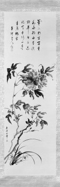 Tachihara Kyosho (Japanese, 1785-1840). Peonies and Orchids, ca. 1790-1810. Ink and slight color on paper, 50 x 16 in. (127 x 40.6 cm). Brooklyn Museum, Gift of Dr. and Mrs. Robert Feinberg, 80.257.1