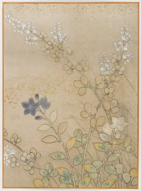 Bush Clover and Chinese Bell Flowers, Album Leaf Painting, 18th century. Album leaf, ink and color on paper, 15 1/8 x 11 1/8 in. (38.4 x 28.3 cm). Brooklyn Museum, Gift of Dr. Fred S. Hurst, 81.287.13