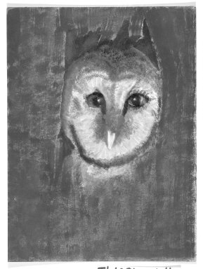 Consuelo Kanaga (American, 1894-1978). [Untitled] (Owl). Pastel and crayon on canvas, 11 3/4 x 8 3/4 in.  (29.8 x 22.2 cm). Brooklyn Museum, Gift of Wallace B. Putnam, 81.318.4