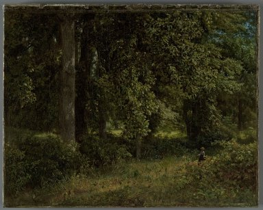 William Trost Richards (American, 1833-1905). Tulip Trees, 1859. Oil on canvas, 13 1/4 x 17 1/16 in. (33.7 x 43.3 cm). Brooklyn Museum, Gift of Nancy Carey, 81.63