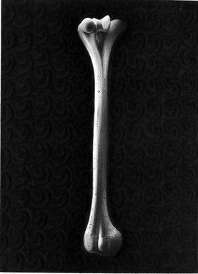 Stephen Rueckert (American, born 1953). Pure Bone, 1982. Graphite on paper, sheet: 11 1/8 x 14 1/8 in. (28.3 x 35.9 cm). Brooklyn Museum, Caroline A.L. Pratt Fund, 82.100.2. © Stephen Rueckert