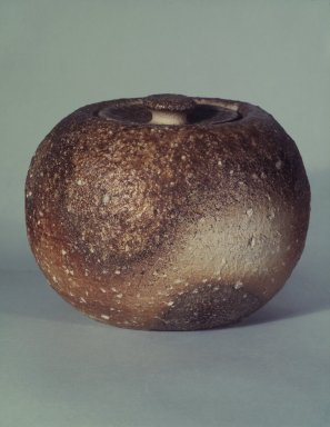 Brooklyn Museum: Fresh-water Jar