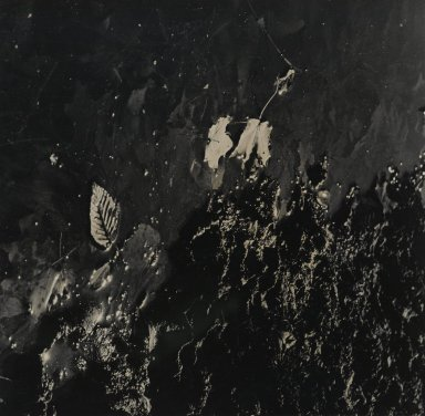Consuelo Kanaga (American, 1894-1978). [Untitled]. Gelatin silver photograph, 8 5/8 x 8 3/8 in. (21.9 x 21.3 cm). Brooklyn Museum, Gift of Wallace B. Putnam from the Estate of Consuelo Kanaga, 82.65.104