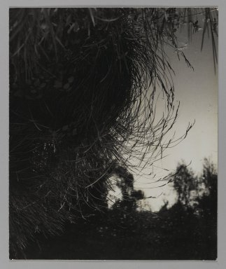 Consuelo Kanaga (American, 1894-1978). [Untitled]. Gelatin silver photograph, Flush Mounted: 11 5/8 x 9 5/8 in. (29.5 x 24.4 cm). Brooklyn Museum, Gift of Wallace B. Putnam from the Estate of Consuelo Kanaga, 82.65.108
