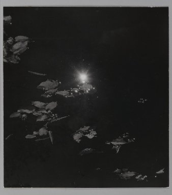 Consuelo Kanaga (American, 1894-1978). [Untitled] (Leaves Floating in Water). Gelatin silver photograph, Flush Mounted: 11 1/2 x 10 3/8 in. (29.2 x 26.4 cm). Brooklyn Museum, Gift of Wallace B. Putnam from the Estate of Consuelo Kanaga, 82.65.114