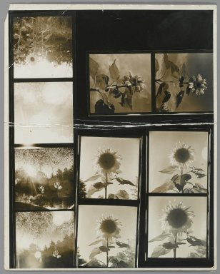 Consuelo Kanaga (American, 1894-1978). [Untitled]. Gelatin silver photograph, contact sheet of 10: 10 x 8 in. (25.4 x 20.3 cm). Brooklyn Museum, Gift of Wallace B. Putnam from the Estate of Consuelo Kanaga, 82.65.350