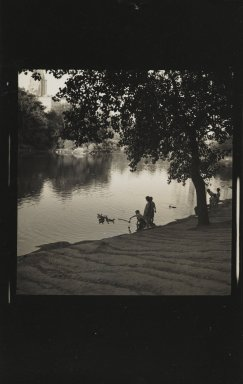 Consuelo Kanaga (American, 1894-1978). [Untitled] (Central Park). Gelatin silver photograph, 4 x 2 5/8 in. (10.2 x 6.7 cm). Brooklyn Museum, Gift of Wallace B. Putnam from the Estate of Consuelo Kanaga, 82.65.351