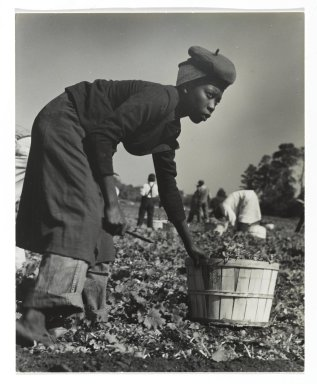 Consuelo Kanaga (American, 1894-1978). [Untitled] (Muckworker). Gelatin silver photograph, 6 3/4 x 5 1/2 in. (17.1 x 14 cm). Brooklyn Museum, Gift of Wallace B. Putnam from the Estate of Consuelo Kanaga, 82.65.358