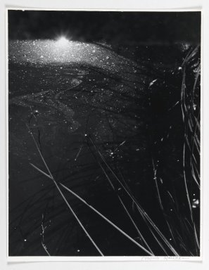 Consuelo Kanaga (American, 1894-1978). [Untitled] (Into the Pond), 1974. Toned gelatin silver photograph, 13 3/8 x 10 3/8 in. (34 x 26.4 cm). Brooklyn Museum, Gift of Wallace B. Putnam from the Estate of Consuelo Kanaga, 82.65.386
