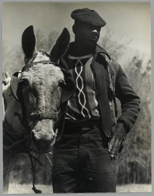 Consuelo Kanaga (American, 1894-1978). [Untitled] (Farmer and Mule, Florida), 1950. Gelatin silver photograph, 9 7/8 x 7 5/8 in. (25.1 x 19.4 cm). Brooklyn Museum, Gift of Wallace B. Putnam from the Estate of Consuelo Kanaga, 82.65.391