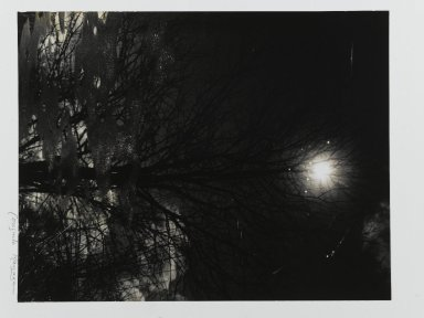 Consuelo Kanaga (American, 1894-1978). [Untitled] (Into Water). Gelatin silver photograph, Image: 13 11/16 x 10 1/2 in. (34.8 x 26.7 cm). Brooklyn Museum, Gift of Wallace B. Putnam from the Estate of Consuelo Kanaga, 82.65.431