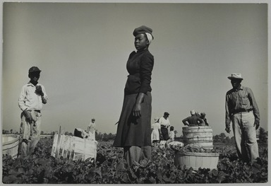 Consuelo Kanaga (American, 1894-1978). Florida Farm Workers, 1950. Gelatin silver photograph, 6 3/4 x 10 in. (17.1 x 25.4 cm). Brooklyn Museum, Gift of Wallace B. Putnam from the Estate of Consuelo Kanaga, 82.65.458