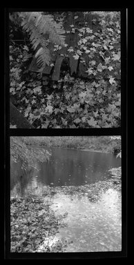 Consuelo Kanaga (American, 1894-1978). [Untitled]. Safety Negative, 5 x 2 1/4 in. (12.7 x 5.7 cm). Brooklyn Museum, Gift of Wallace B. Putnam from the Estate of Consuelo Kanaga, 82.65.497