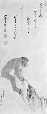 Maruyama Okyo (Japanese, 1733-1795). Monkey, 1773. Hanging scroll, ink and light color on paper, 72 x 20 3/8 in. (182.9 x 51.8 cm). Brooklyn Museum, Gift of Dr. Kenneth Rosenbaum, 83.191.4