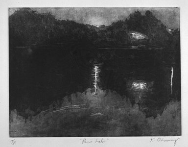 Katie O'Looney. Pine Lake, 1983. Aquatint on paper, sheet: 15 1/16 x 20 1/8 in. (38.3 x 51.1 cm). Brooklyn Museum, Gift of the Printmaking Workshop in honor of Una E. Johnson, 84.307.9. © Katie O'Looney