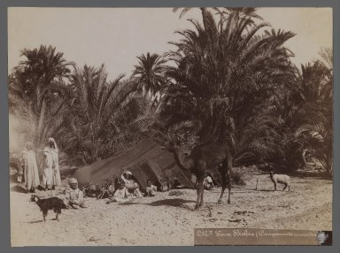 View from Site in Northern Africa or Syria, 19th Century. Albumen silver photograph, 7 3/8 x 10 in. (18.7 x 25.4 cm). Brooklyn Museum, Gift of Samuel Kirschenbaum, 86.265.7