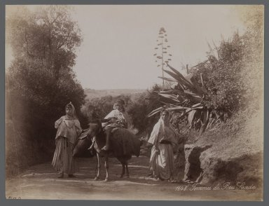 View from Site in Northern Africa or Syria, 19th Century. Albumen silver photograph, 7 1/2 x 10 in. (19.1 x 25.4 cm). Brooklyn Museum, Gift of Samuel Kirschenbaum, 86.265.8