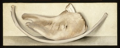 Georgia O'Keeffe (American, 1887-1986). Rib and Jawbone (recto) and Tulip (verso), 1935. Oil on canvas, 9 x 24 in.  (22.9 x 61.0 cm). Brooklyn Museum, Bequest of Georgia O'Keeffe, 87.136.5a-b. copyright transferred to Brooklyn Museum, 2006