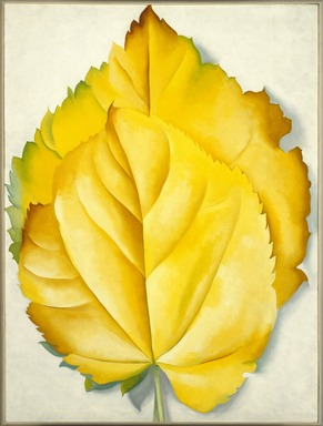 Georgia O'Keeffe (American, 1887-1986). 2 Yellow Leaves (Yellow Leaves), 1928. Oil on canvas, 40 x 30 1/8 in. (101.6 x 76.5 cm). Brooklyn Museum, Bequest of Georgia O'Keeffe, 87.136.6. copyright transferred to Brooklyn Museum, 2006