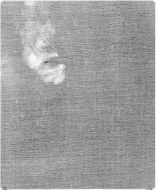 Emil Fuchs (American, 1866-1929). Lady in Black, 1901. Oil on canvas, 46 15/16 x 36 15/16 in. (119.2 x 93.8 cm). Brooklyn Museum, Gift of the Estate of Emil Fuchs, 32.199.7