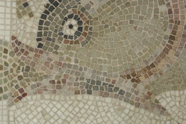Brooklyn Museum: Mosaic of Dolphin Facing Left