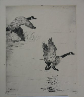 Frank Weston Benson (American, 1862-1951). Geese Alighting, 1916. Drypoint etching on cream, medium thick, slightly textured wove paper, Sheet: 14 1/16 x 11 5/16 in. (35.7 x 28.7 cm). Brooklyn Museum, Museum Collection Fund, 17.136