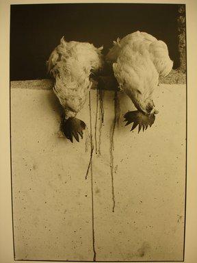 Graciela Iturbide (Mexican, born 1942). Untitled, 1981. Gelatin silver photograph, Sheet: 14 x 11 in. Brooklyn Museum, Gift of Marcuse Pfeifer, 1990.119.37. © Graciela Iturbide