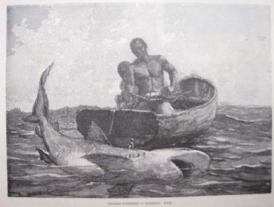 Winslow Homer (American, 1836-1910). Shark Fishing-Nassau Bar, 1887. Engraving, illustration: 3 7/8 x 5 5/16 in.  (9.8 x 13.5 cm). Brooklyn Museum, Gift of Harvey Isbitts, 1998.105.211