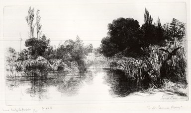 Seymour Haden (British, 1818-1910). Shere Mill Pond, 1860. Etching and drypoint on laid paper, 7 x 13 1/16 in. (17.8 x 33.2 cm). Brooklyn Museum, Gift of Samuel P. Avery, Jr., 21.318