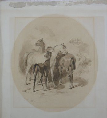 Felix Octavius Carr Darley (American, 1822-1888). Horses, n.d. Graphite and ink wash on heavy paper, Sheet: 17 x 14 5/8 in. (43.2 x 37.1 cm). Brooklyn Museum, Frederick Loeser Fund, 28.214