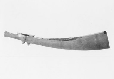 Brooklyn Museum: Horn