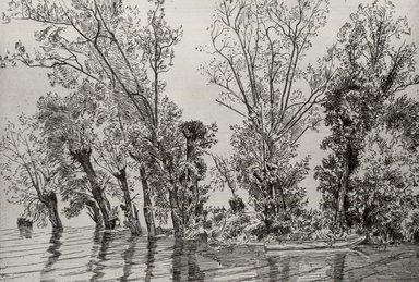 Félix Bracquemond (French, 1833-1914). The Willows at Mottiaux (Les saules des Mottiaux), 1868. Etching on laid paper, 7 15/16 x 11 9/16 in. (20.2 x 29.4 cm). Brooklyn Museum, By exchange, 36.968