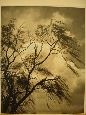 Dr. Drahomir Josef Ruzicka (American, born Czech Republic, 1870-1960). April Winds and Showers. Photograph Brooklyn Museum, Gift of the artist, 41.448