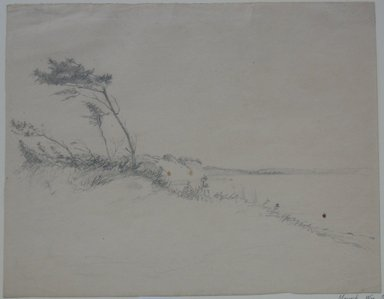 Brooklyn Museum: Trees in Wind