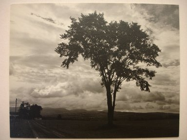Walter Rosenblum (American, 1919-2006). Vermont, 1949. Chloro bromide photograph, 3 1/2 x 4 1/2 in.  (8.9 x 11.4 cm). Brooklyn Museum, Gift of Walter Rosenblum, 51.241.1. © Rosenblum Archive