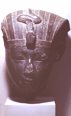 Head of Hatshepsut or Thutmose III