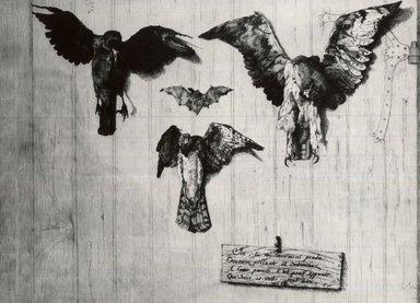 Félix Bracquemond (French, 1833-1914). LeHaut D'un Battant de Porte (Four Birds), 1852. Etching on laid paper, 12 x 15 7/8 in. (30.5 x 40.3 cm). Brooklyn Museum, Gift of Mrs. Howard M. Morse, 59.53.1