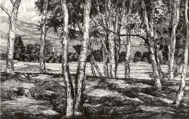 Luigi Lucioni (American, born Italy, 1900-1988). Trees, 1940. Etching on Japan paper, Plate: 7 1/2 x 11 7/8 in. (19.1 x 30.2 cm). Brooklyn Museum, Gift of Mrs. Harold J. Baily, 67.27.11