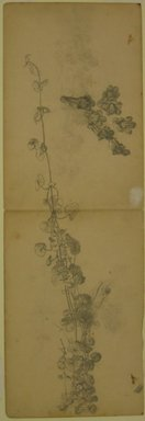 William Trost Richards (American, 1833-1905). Foliage Study, n.d. Graphite on paper, Sheet: 18 x 6 1/16 in. (45.7 x 15.4 cm). Brooklyn Museum, Gift of Edith Ballinger Price, 72.32.16