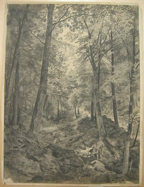 William Trost Richards (American, 1833-1905). Forest Scene with Rocky Brook, ca. 1864-67. Charcoal on cream, moderately thick, slightly textured wove paper mounted to paper., Sheet (drawing): 22 13/16 x 17 13/16 in. (57.9 x 45.2 cm). Brooklyn Museum, Gift of Edith Ballinger Price, 72.32.2