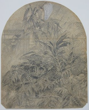 William Trost Richards (American, 1833-1905). Ferns, January 1860. Graphite on paper, Sheet: 10 x 7 7/8 in. (25.4 x 20 cm). Brooklyn Museum, Gift of Edith Ballinger Price, 72.32.31