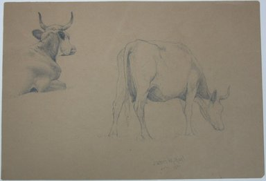 James McDougal Hart (American, 1828-1901). Study of Cows, July 1871. Graphite on paper, Sheet: 10 7/16 x 15 1/4 in. (26.5 x 38.7 cm). Brooklyn Museum, Gift of Mr. and Mrs. Maurice Glickman, 73.117.1