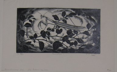 Grace Arnold Albee (American, 1890-1995). Camouflage, 1965. Wood engraving on paper, Sheet: 6 1/4 x 9 1/2 in. (15.9 x 24.1 cm). Brooklyn Museum, Gift of the artist, 76.198.65. © Estate of Grace Arnold Albee